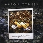 Aaron Comess - Beautiful Mistake