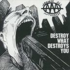 Against All Authority - Destroy What Destroys You