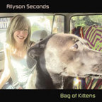Allyson Seconds - Bag Of Kittens
