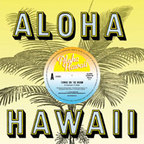Aloha Hawaii - Towns On The Moon