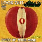 Asterix - Look Out
