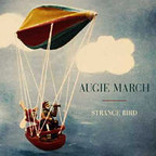 Augie March - Strange Bird