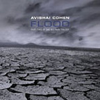 Avishai Cohen - Flood · Part Two Of The Big Rain Trilogy
