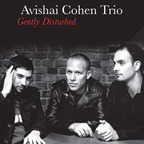 Avishai Cohen Trio - Gently Disturbed