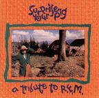 Band Of Susans - Surprise Your Pig · A Tribute To R.E.M.