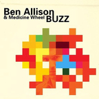 Ben Allison & Medicine Wheel - Buzz