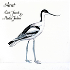 Bert Jansch & Martin Jenkins - Avocet