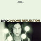 Bird - Chrome Reflection