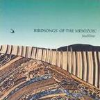 Birdsongs Of The Mesozoic - Faultline