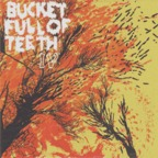 Bucket Full Of Teeth - IV