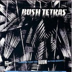 Bush Tetras - Things That Go Boom In The Night