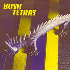 Bush Tetras - Too Many Creeps