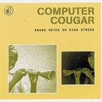 Computer Cougar - Rough Notes On High Stress