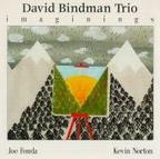David Bindman Trio - Imaginings