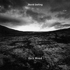 David Darling - Dark Wood