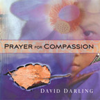 David Darling - Prayer For Compassion