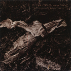 David Sylvian - Plight & Premonition