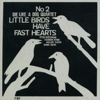 Die Like A Dog Quartet - Little Birds Have Fast Hearts No. 2