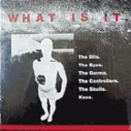 Dils - What Is It
