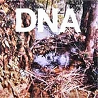DNA (US 1) - A Taste Of DNA