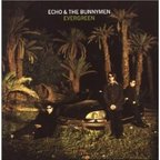 Echo And The Bunnymen - Evergreen