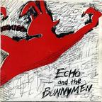 Echo And The Bunnymen - The Pictures On My Wall