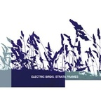 Electric Birds - Strata Frames