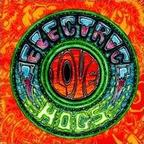 Electric Love Hogs - s/t