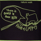 Fields Of Gaffney - Nature Walk