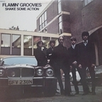 Flamin Groovies - Shake Some Action