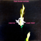 Flesh Eaters - Forever Came Today