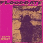 Floodgate - I Choose Danger