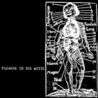 Flowers In The Attic - s/t