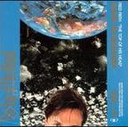 Fred Frith - The Top Of His Head