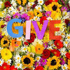 Give - s/t