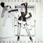 Godley Creme - Birds Of Prey