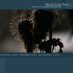 Helge Lien Trio - What Are You Doing The Rest Of Your Life