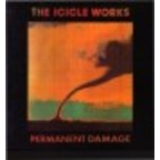 Icicle Works - Permanent Damage