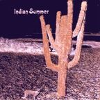 Indian Summer (UK) - s/t