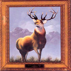 Killdozer (US) - Twelve Point Buck