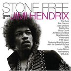 M.A.C.C. - Stone Free · A Tribute To Jimi Hendrix