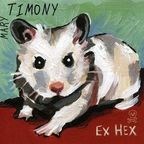 Mary Timony - Ex Hex