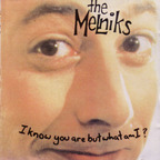 Melniks - I Know You Are But What Am I?