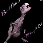 Midnight Oil - Bird Noises