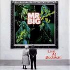 Mr. Big - Live At Budokan