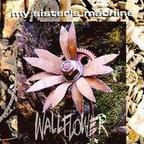 My Sister's Machine - Wallflower