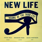 New Life Trio - Visions Of The Third Eye