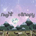 Night Canopy - Of Honey And Country