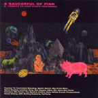 Nik Turner - A Saucerful Of Pink