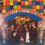 Nitty Gritty Dirt Band - Rare Junk